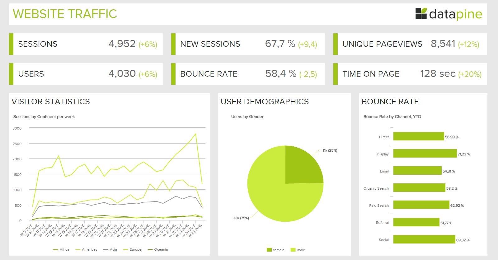 Branded dashboard from datapine