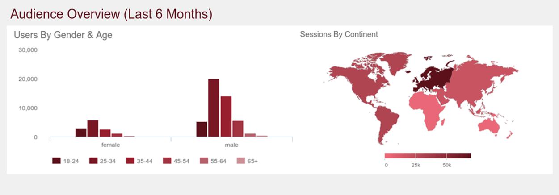 Website traffic analytics: audience demographics