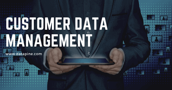 Customer data management by datapine