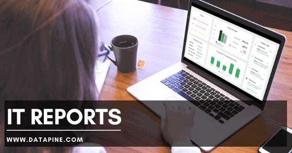 IT reports by datapine