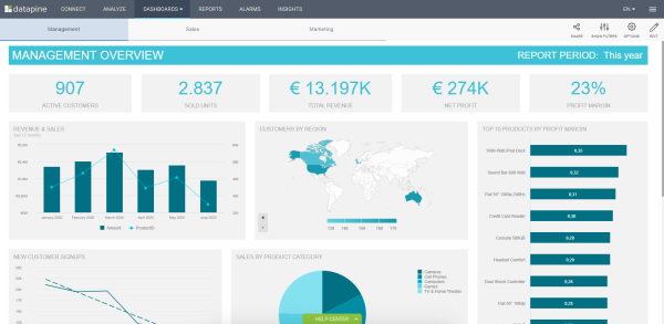 CEO dashboard software example showing the management overview for the reporting period during this year