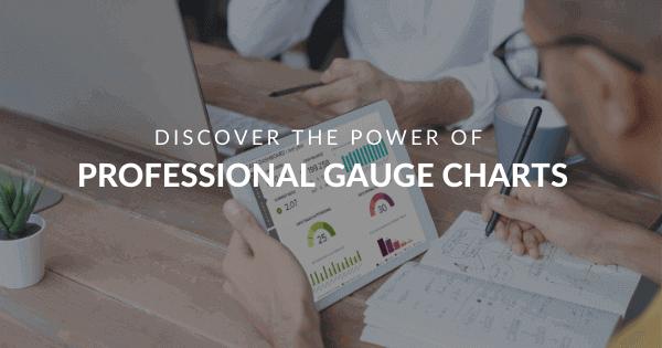 Gauge Charts blog by datapine
