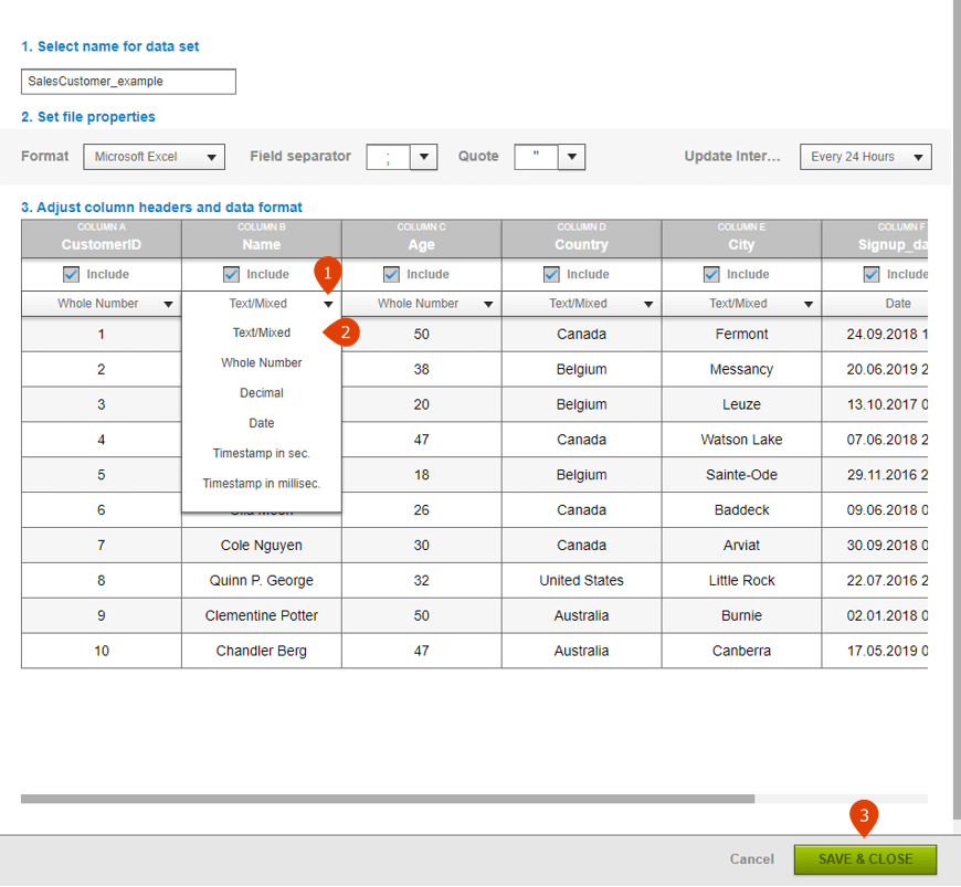 How to update a field type in a csv