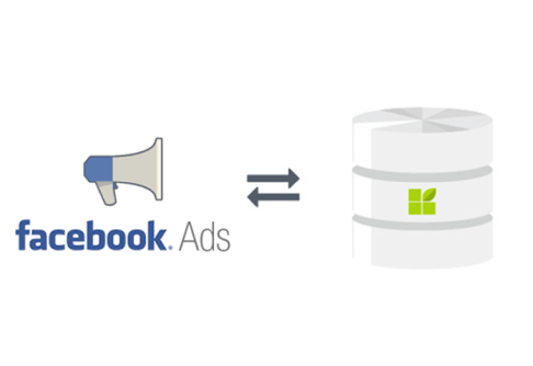 Facebook Ads to datapine connection