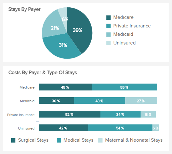 column and pie chart displaying the costs per payer