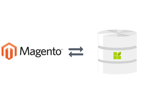 magento to datapine connection