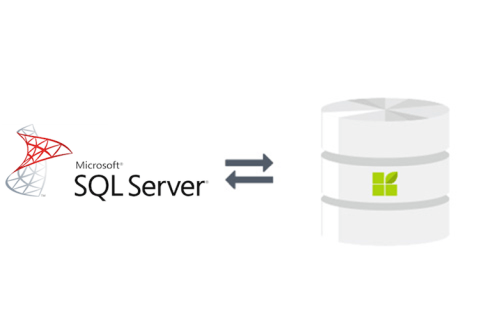 MS SQL Server to datapine connection