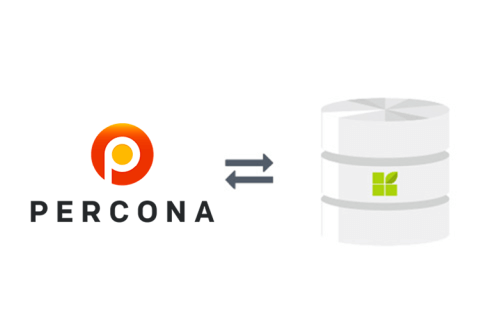 Percona connection to datapine
