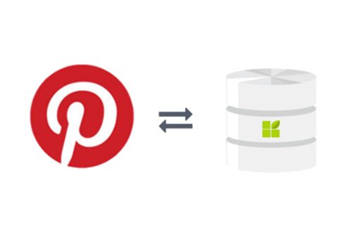 pinterest connection to datapine