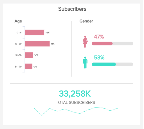 charts which visualize the age and gender of digital subscriber